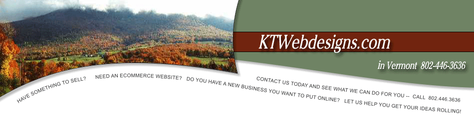 Ecommerce website designs - www.ktwebdesigns.com